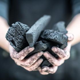 Drevné uhlie  vyrobené na Slovensku, 10 kg balenie
